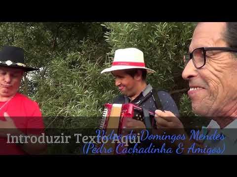 Desgarradas em S. Joao D´Agra, Pedro Cachadinha & Amigos, 29-08-2017