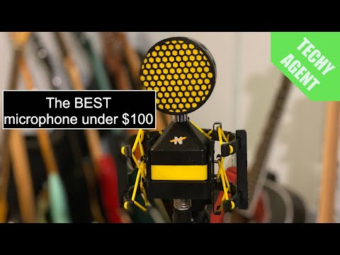 Neat Worker Bee Microphone - Review