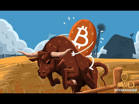 Daily Bitcoin Analysis 28/12/2020 BTC Bulls are not giving up!