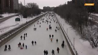 Канадские парламентарии ездят на работу на коньках