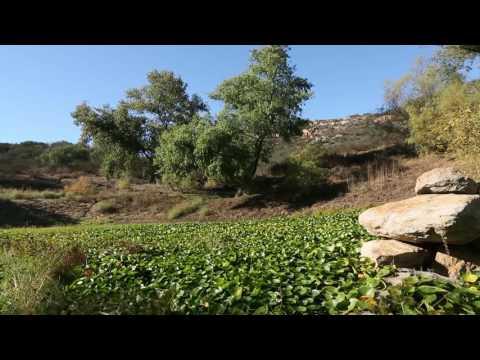 17750 Bear Valley Ln -117-Acre Organic Farm - Phil Gibbs & Amelia Smith