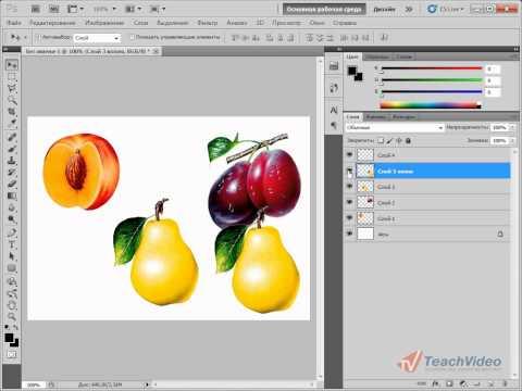 Работа со слоями в Adobe PhotoShop CS5 (10/51)