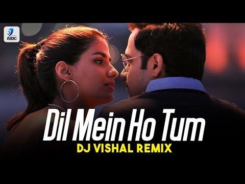 Dil Mein Ho Tum (Remix) | DJ Vishal | Emraan Hashmi | Shreya Dhanwanthary | Armaan Malik