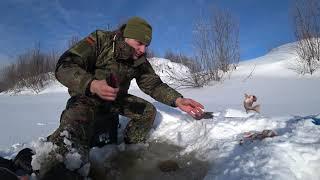 Чертик удивил. Куча больших окуней с одной лунки. Даже бабушка рыбачит на льду.