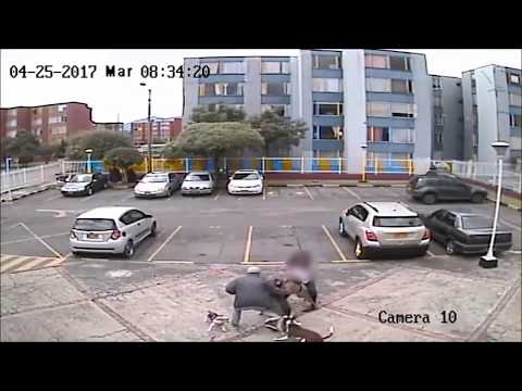 Download Youtube: Ataque Pitbull a Husky
