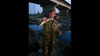 Gambar cover Вобла заходит в ерик разлив в Астрахане 2 мая 2015