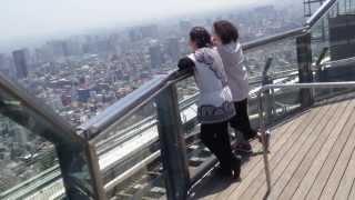 Tokyo City View. Mori Tower Sky Deck. Roppongi Hills, Tokyo.