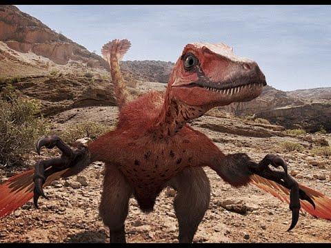 Velociraptor Tribute - Phoenix