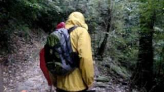 屋久島でのトレッキング中、トロッコの枕木の上を歩く内に雨でスリップ...