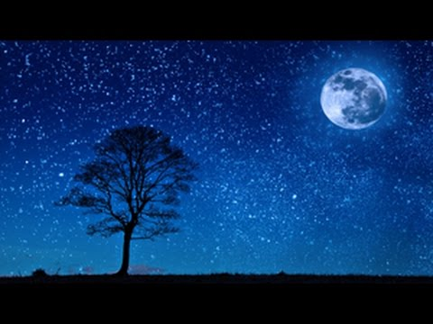 8 Hour Deep Sleep Music ~ Relaxing Ambient Sleep ~ Delta Brainwaves ( Zen, Meditation)