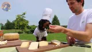 """Crusoe's """"cheese Tasting"""" At Gunn's Hill Artisan Cheese"""