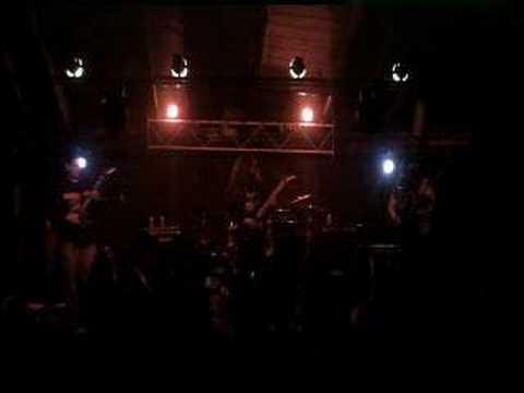 Rotten Disgorgement - Morbid Desecration