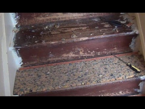 Staircase Makeover: Part I - Carpet Removal