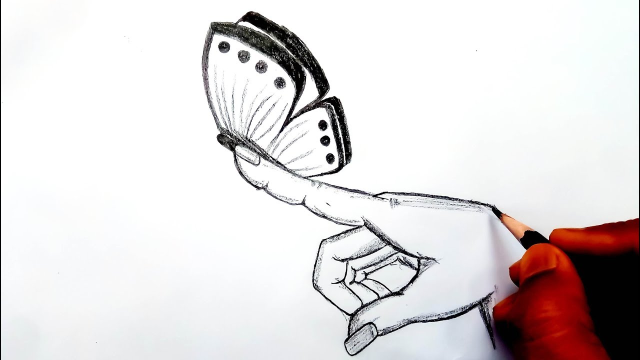 How to draw a butterfly butterfly on a finger butterfly drawings in pencil easy drawing