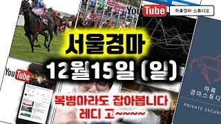 서울경마12월15일(일) 경마예상방송 하룩서울부산제주경…