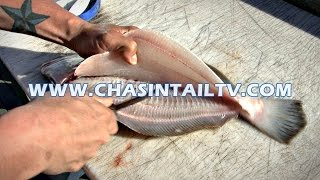 Fillet a Flounder in Under 15 seconds!! | Chasin
