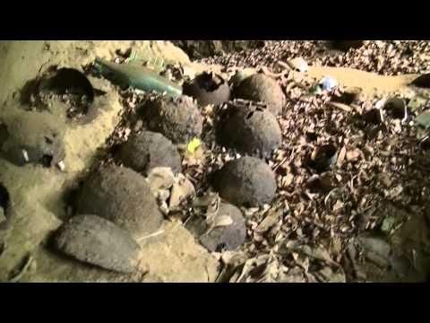 硫黄島 最後の突撃壕Iwo Jima The last attack cave SaigonototugekiGou