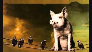 Pink Floyd - Animals Radio Advert