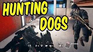 Hunting Dogs - MISH MASH #15