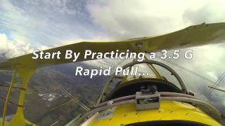 2015 Standard Sequence in Pitts S2A