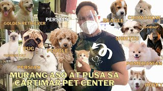 LATEST PET PRICE LIST IN CARTIMAR (APRIL 2021) ADORABLE !!! *** MUST WATCH ***