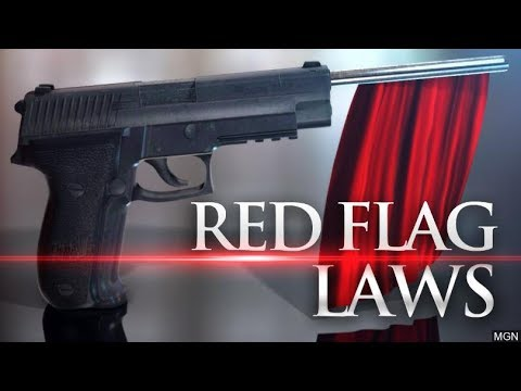 BREAKING: National Red Flag Bill in the Works - SHARE THIS!