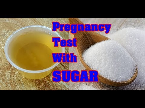 Home Pregnancy Test With Sugar Homemade Pregnancy Test With Sugar