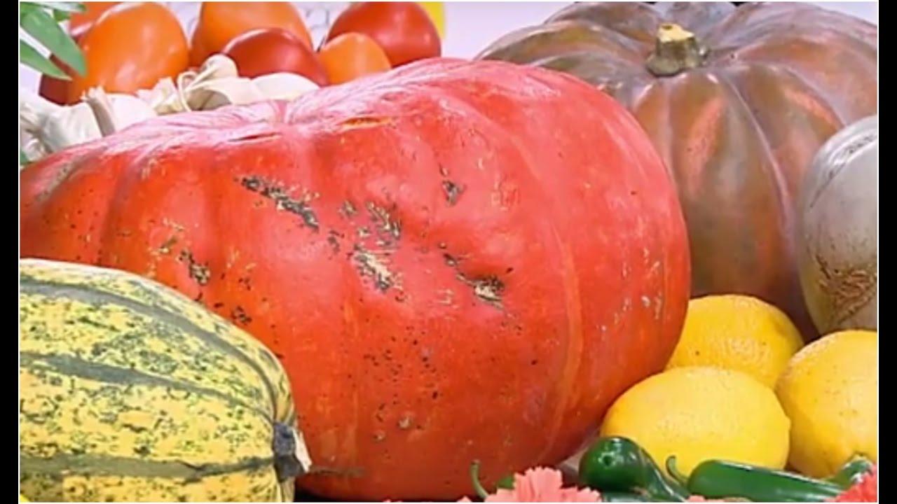 Jesienna Kuchnia Dyniowa Dzień Dobry Tvn