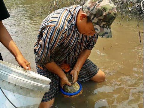 จับปลาเชียงตุง Kengtung Fishing EP.1