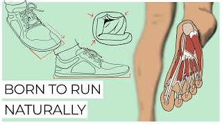 The Science Behind Barefoot Running Shoes