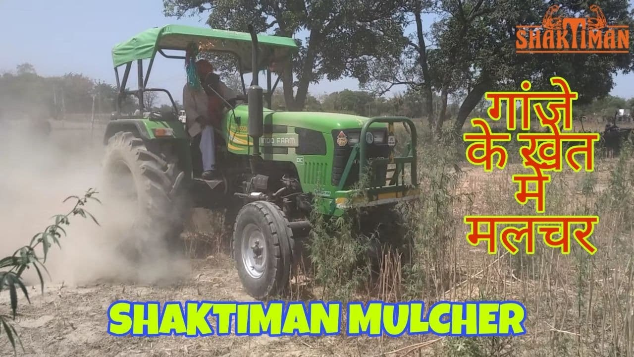 Download Mulcher Shaktiman With  #Indofarm_3055DI (गाजे के खेत मे मल्चर चलता हुआ)   RATNESH