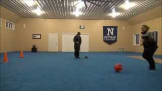 Piper (yorkshire Terrier) Puppy Camp Training Video