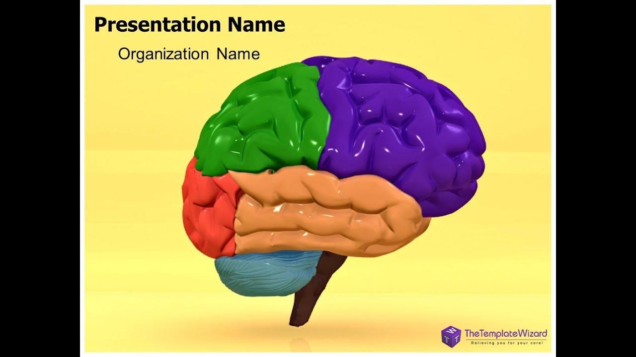 3D Human Brain Powerpoint Template - Thetemplatewizard - Youtube, Powerpoint  Templates