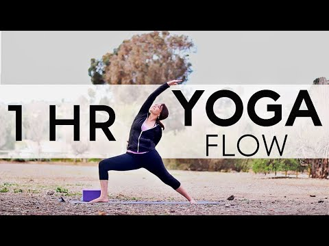 1 Hr Total Body Yoga Flow (Bird Of Paradise) | Fightmaster Yoga