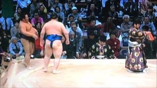 平成28年大相撲九州場所 11月18日 満員御礼 Sumo -Kyushu Basho.