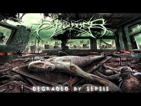 BrutalityDeath666 20 Tops Ultra Guttural Slamming Brutal Death Metal Releases 2013!