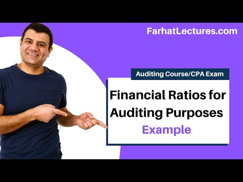 Financial ratios for auditing purposes CPA exam AUD auditing and attestation example
