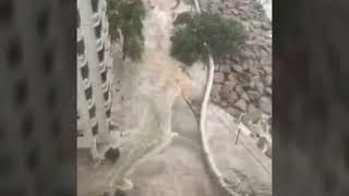 Bão số 6 Hato càn quét qua Hong Kong 23/8/2017