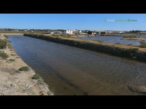 Salinas de Isla Cristina, Flor de sal Biomaris, Isla Cristina. Huelva