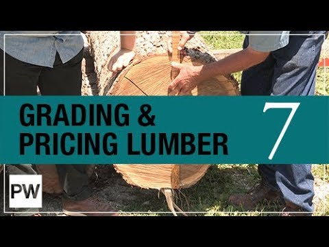 Milling Your Own Lumber - Part 7: Grading & Pricing
