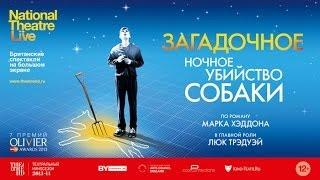 TheatreHD: «Загадочное ночное убийство собаки» — трансляция спектакля в СИНЕМА ПАРК