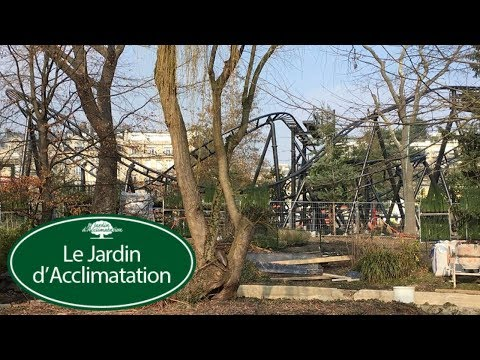 Jardin d'Acclimatation Vlog February 2018