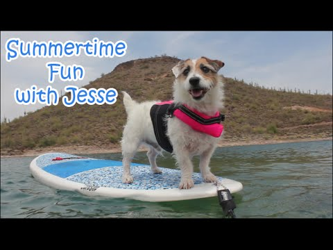 Summertime Fun with Jesse
