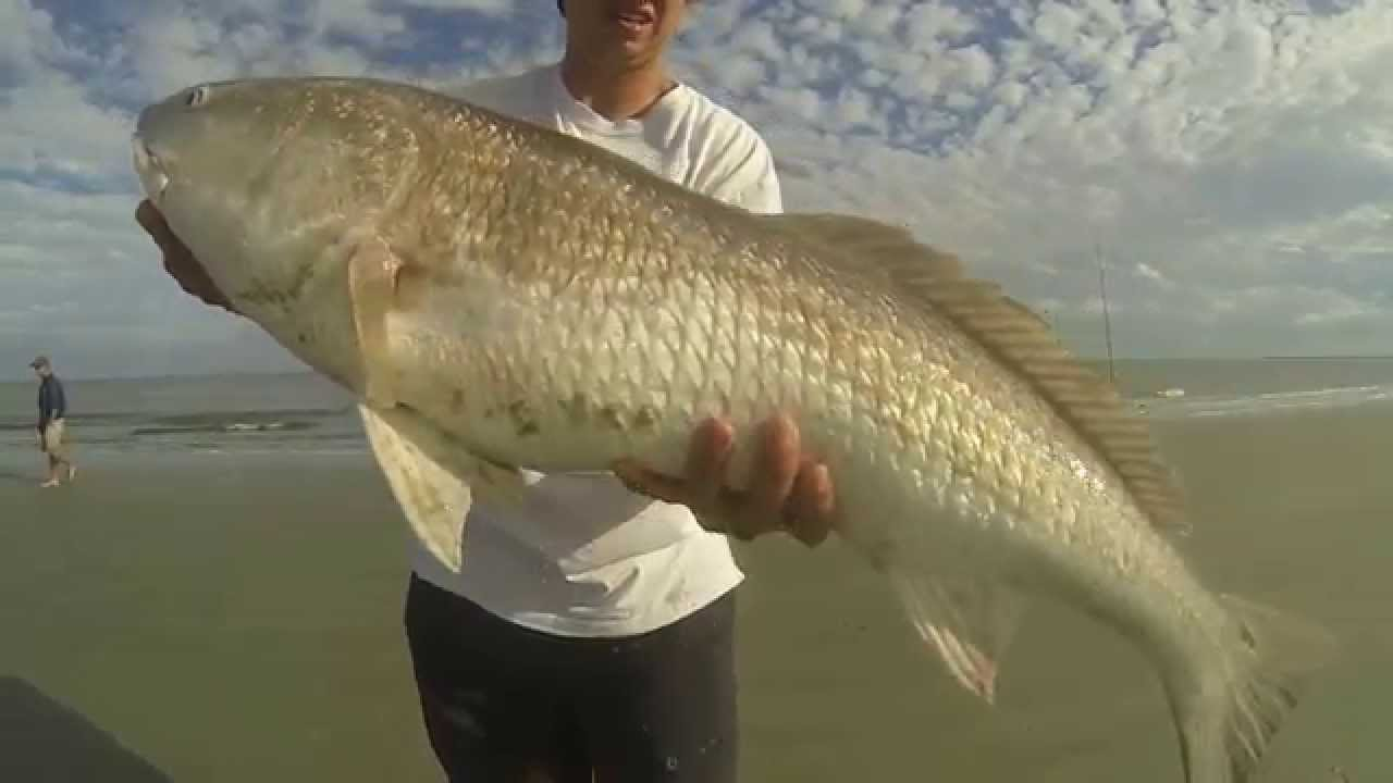 St Simons Island Surf Fishing