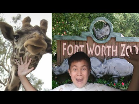 GOING TO THE FORTH WORTH ZOO!!!