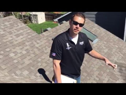 Roof Inspection | Denver Roofer | Hail Damage | Integrity Roofing and Painting