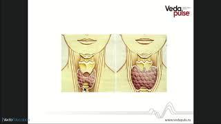 нарушение функции щитовидной железы. Гипотиреоз