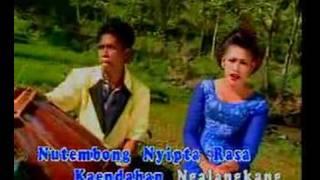 Download Video JAIPONG - DAUN PULUS 16 MP3 3GP MP4
