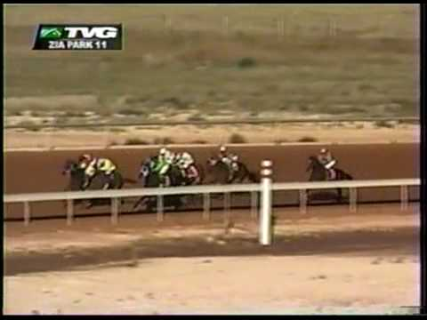 Horse racing oddity: incredible stretch run - YouTube