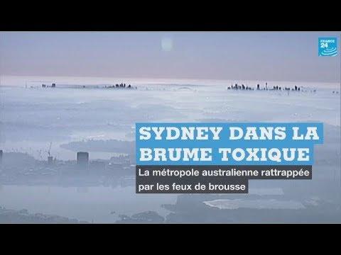 Sydney se réveille dans un épais brouillard toxique